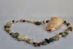Denni kamienie wykładają z inside i sercem skorupa Obraz Stock