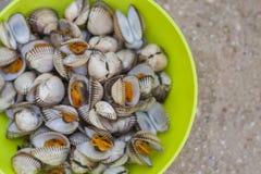 Denni shellfish w zielonym pucharze, gotującym ogieniem na plaży Fotografia Royalty Free