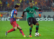 Dennis Aogo and Cristian Tanase during UEFA Champions League game Stock Images
