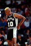 Dennis Rodman, Сан-Антонио Сперс Стоковые Изображения