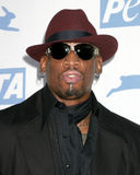 Dennis Rodman Royalty Free Stock Photography