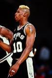 Dennis Rodman, San Antonio Spurs Stock Images
