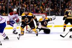 Dennis Seidenberg Boston Bruins Royalty Free Stock Image