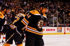 Dennis Seidenberg Boston Bruins Stock Images