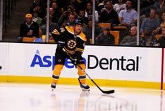 Dennis Seidenberg Boston Bruins Royalty Free Stock Photos