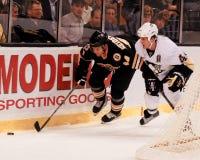 Dennis Seidenberg Boston Bruins Immagini Stock Libere da Diritti
