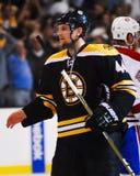 Dennis Seidenberg Boston Bruins Imagens de Stock Royalty Free