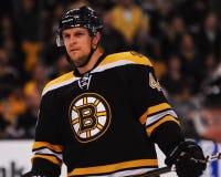 Dennis Seidenberg Boston Bruins Lizenzfreies Stockfoto