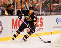 Dennis Seidenberg, Boston Bruins defenseman Στοκ εικόνα με δικαίωμα ελεύθερης χρήσης