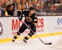 Dennis Seidenberg, Boston Bruins defenseman. Royalty Free Stock Image