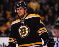 Dennis Seidenberg Boston Bruins Royalty Free Stock Photo