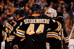 Dennis Seidenberg, Boston Bruins defenseman. Royalty Free Stock Photo
