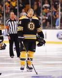 Dennis Seidenberg, Boston Bruins Stock Images