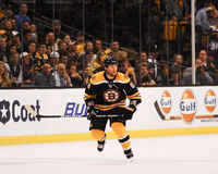 Dennis Wideman, Boston Bruins Fotografia de Stock Royalty Free
