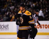 Dennis Wideman, Boston Bruins. Stock Photos