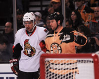 Dennis Wideman, Boston Bruins Royalty Free Stock Photo