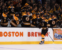 Dennis Wideman, Boston Bruins Royalty Free Stock Images