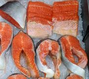 Denny świeży czerwony białej ryby łosoś fotografia royalty free
