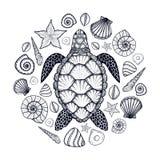 Denny żółw i skorupy w kreskowej sztuce projektujemy Ręka rysująca wektorowa ilustracja Set oceanów elementy ilustracji