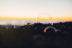 Denny żwiru brzeg, plaża z mydlanymi bąblami przy zmierzchem lub, zabarwiająca fotografia Zdjęcie Royalty Free