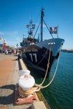 Denny baca Steve Irwin Dokujący przy Portowym Adelaide Fotografia Stock