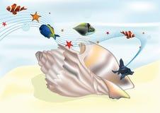 Denny cockleshell i tropikalne małe ryba Zdjęcie Stock