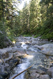 Denny Creek waterfall forest Stock Images