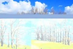 denny drzewo Fotografia Royalty Free