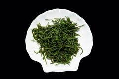 Denny fasoli glasswort lub Salicornia sałatka na talerzu pickleweed obraz royalty free
