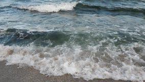 Denny oceanu brzeg zbiory wideo