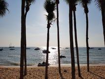 Denny piaska słońce Pattaya Zdjęcie Stock