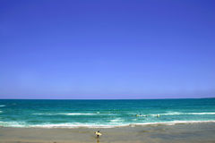 denny surfera Fotografia Stock