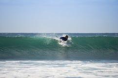Denny surfing Obrazy Stock