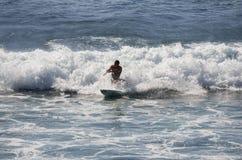 Denny surfing Zdjęcie Royalty Free