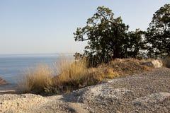 Denny widok od otoczak plaży Fotografia Stock