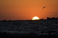 - denny wschód słońca Obrazy Stock