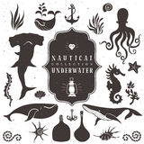 Denny życie, morscy zwierzęta Roczników ręka rysujący elementy Obrazy Royalty Free