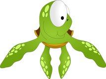 Denny zielony żółw z dużymi oczami Obraz Stock