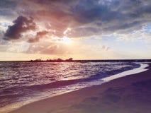 Denny zmierzchu tło Zadziwiającego dennego zmierzchu zmierzchu denny obrazek Zmierzchu morza fala za sosnowymi stałego sunset drz Zdjęcie Stock