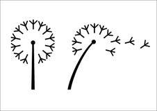 Denominação da flor do dente-de-leão Foto de Stock Royalty Free