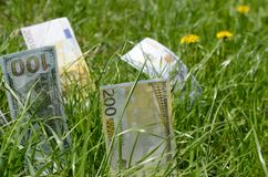 Denominations of dollars and euros in green grass. royalty free stock photo