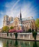 de法国贵妇人notre巴黎 免版税图库摄影
