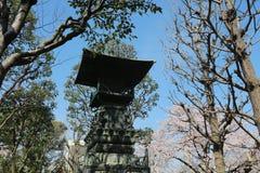 Denpo在樱花期间的浅草 库存图片