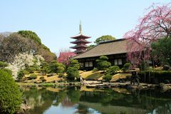 Denpoin Temple Tokyo Royalty Free Stock Images