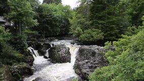 Densamundervisnings- Wales UK snabba flödande floden med vitt vatten som över flödar, vaggar lager videofilmer