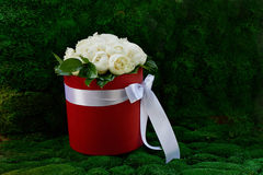 Dense bouquet of peony roses in a red box. Stock Images