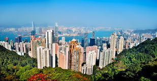 Dense city panorama. Panorama of the Hong Kong Victoria Harbor from the Peak. We can see the forest of skyscrapers and building on clear sunny day from above Royalty Free Stock Photos