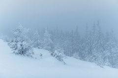 Dense fog in the mountains. Dramatic scene. Magical winter snow Royalty Free Stock Image