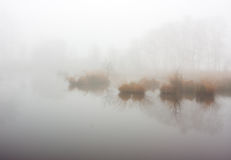 Dense fog over a lake Royalty Free Stock Photography