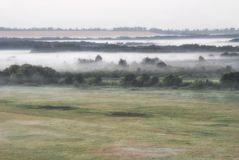 Dense fog over summer morning fields meadows and forests.  Royalty Free Stock Image